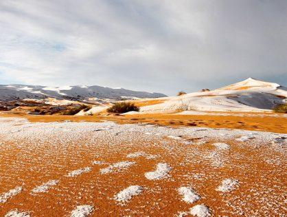 La nieve llega al Sáhara