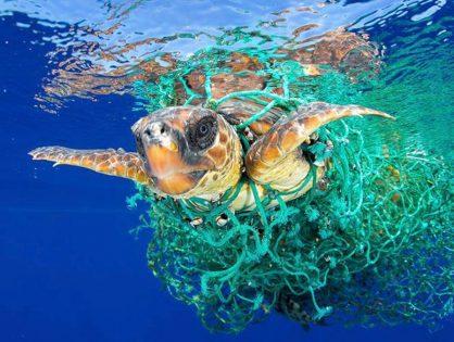 Guayaquil prohibirá los plásticos de un solo uso