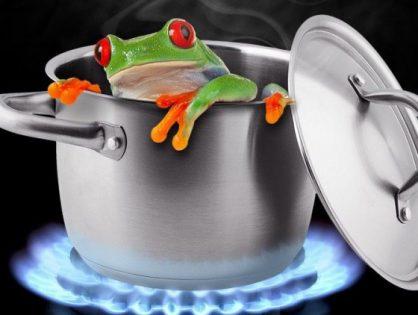 ¿Han pasado por el síndrome de la rana hervida?